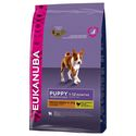 EUKANUBA PUPPY MEDIUM ��� ������ ������� ����� � �������