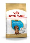 ROYAL CANIN DACHSHUND JUNIOR для щенков породы такса