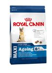 ROYAL CANIN MAXI AGEING 8+ ��� ����� ������� ����� ������ 8 ���