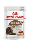 ROYAL CANIN AGEING +12 ��� ����� ������ 12 ��� ������ ������� � �����