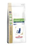 ROYAL CANIN �/� ��� ������ ���34